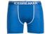 Icebreaker Anatomica - Sous-vêtement en laine mérinos Homme - bleu